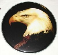 Schlagzeugfell - Drumhead - 22 Zoll Top Motiv ! Eagle